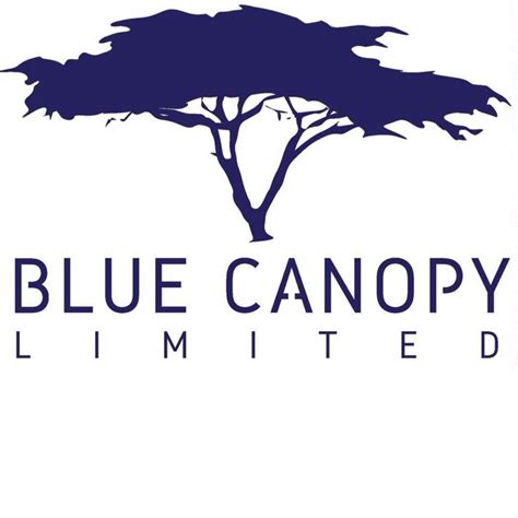 Canopy Language by Blue Canopy Limited Business Language Services In Nairobi