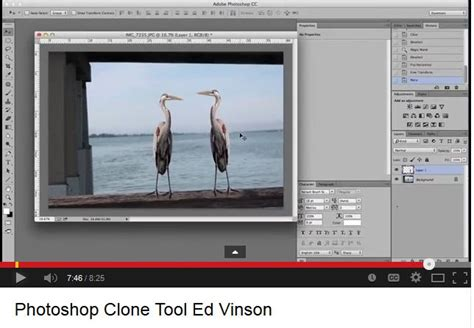 rubber st photoshop tutorial using the adobe photoshop clone or quot rubber st quot tool and