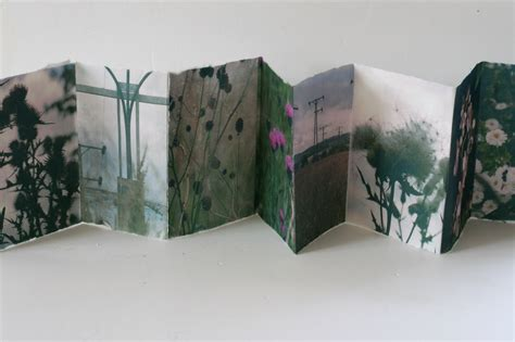 picture book artists concertina books susanmortimer