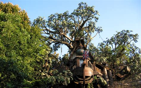 swiss tree swiss family robinson disney tree memories