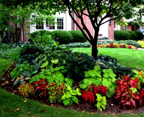 beautiful yards landscaping ideas front yard pics the garden inspirations