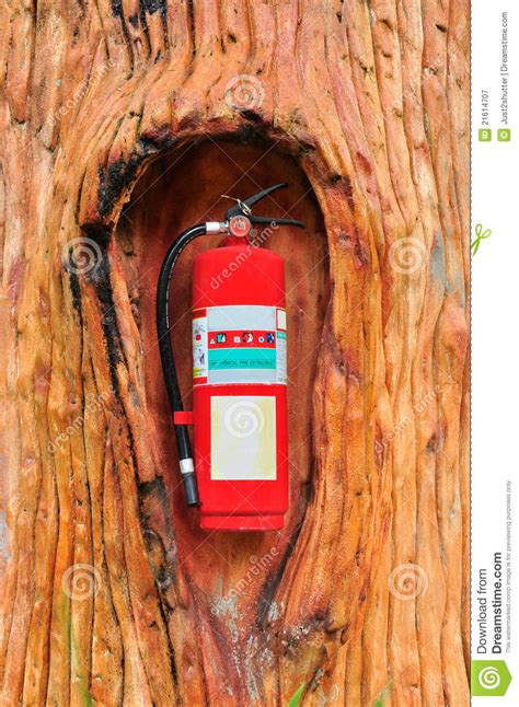 tree extinguisher extinguisher in the tree royalty free stock