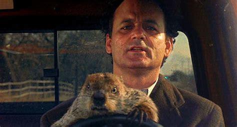 groundhog day synopsis groundhog day critics up