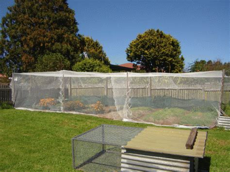 shade cloth for vegetable gardens vegetable garden 2 bird netting and shade cloth our