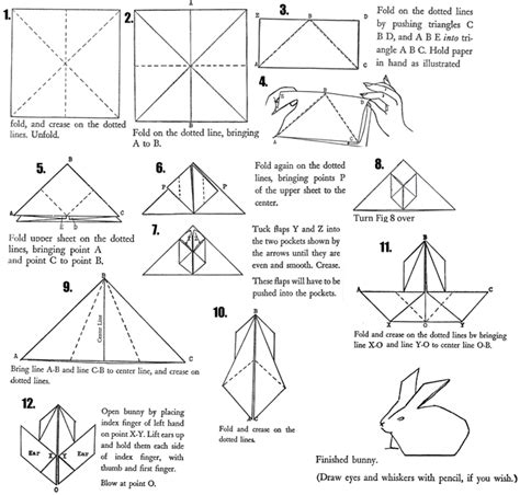 how to fold an origami rabbit small animals pet store rabbit origami