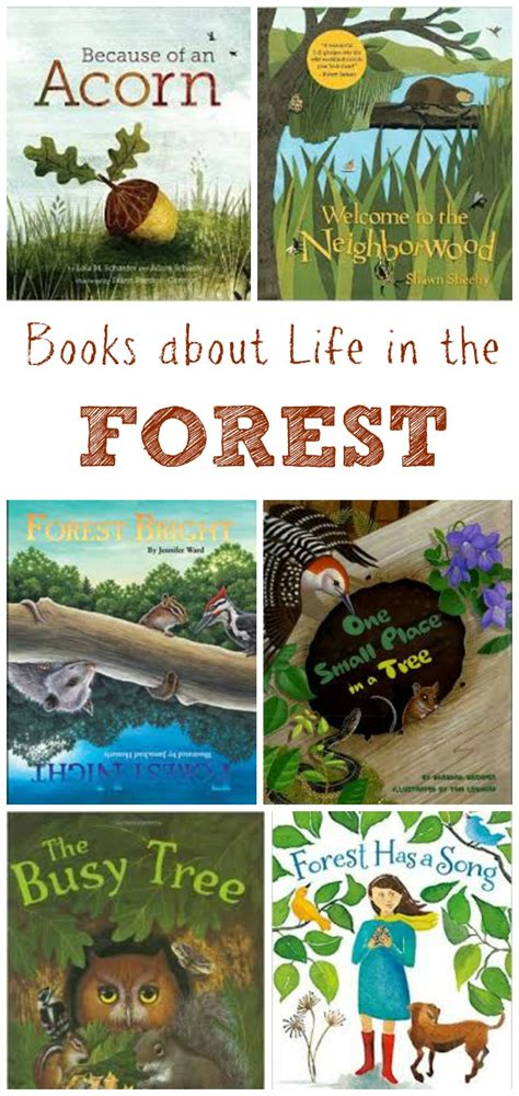 rainforest picture books children s books about the forest edventures with