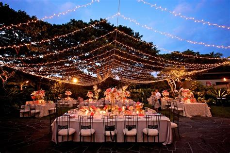 twinkle lights in bulk twinkle light canopy at garden lawn four seasons