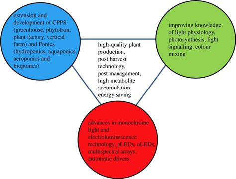 what to do with lights photosynthesis artificial light the shift in