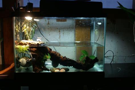 aquarium pour emydura