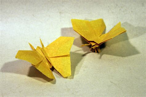 origami bugs advanced origami butterfly comot