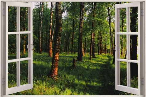 Enchanted Forest Wall Stickers huge 3d window view enchanted forest wall sticker mural