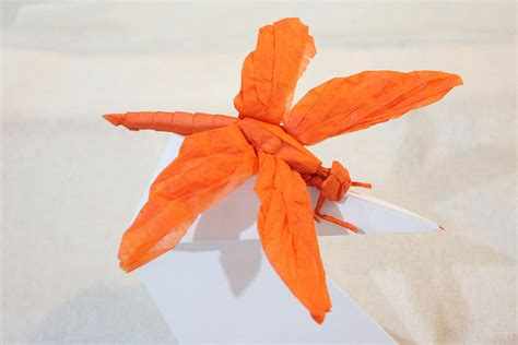 origami dragonfly 24 incredibly realistic looking origami insects