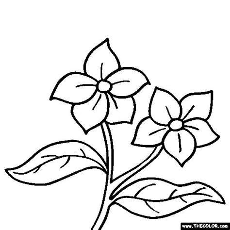 coloring book pictures of flowers free coloring pages of gerber flowers