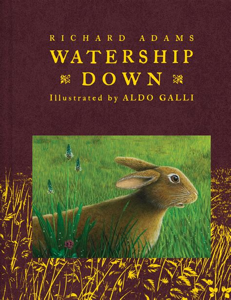 the watership picture book watership book by richard aldo galli