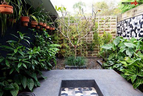 home vertical garden best vertical indoor plant from home and garden catalog