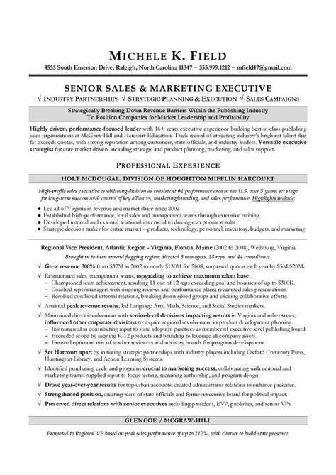 resume examples professional summary vice president marketing resume best resume example