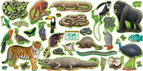 Large Alphabet Wall Stickers rainforest animals in stock at purpleroom crafts