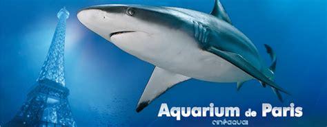 aquarium de cin 233 aqua isic carte d 233 tudiant internationale avantage reduction