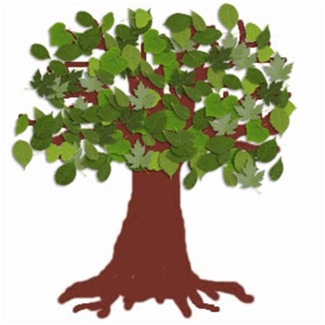 tree gifs animated exles of student work