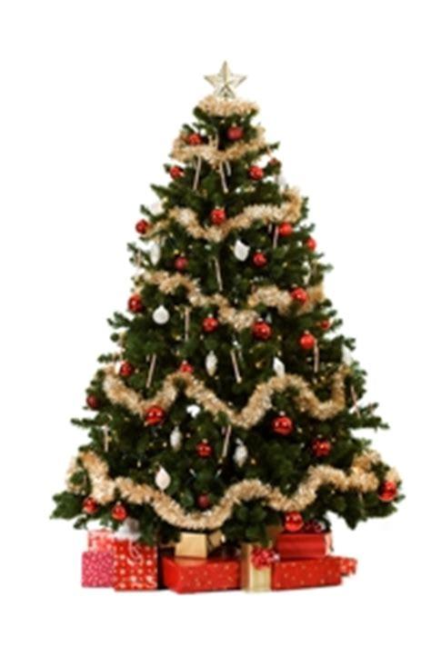 weihnachtsbaum klein weihnachtsbaum klein my