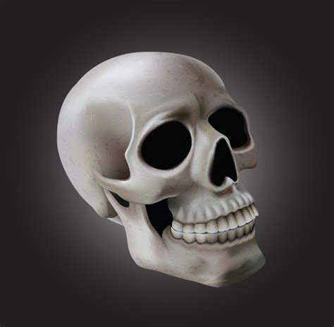 tutorial skull using meshes to create a detailed skull with adobe illustrator