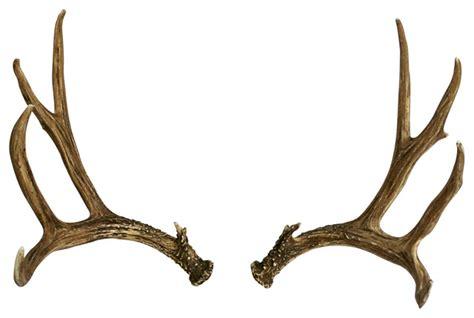 deer antler faux deer antler set mule deer right left rustic home