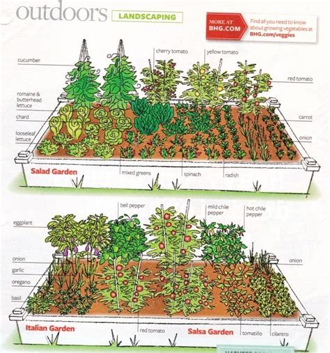 garden design layouts 25 best ideas about garden layouts on