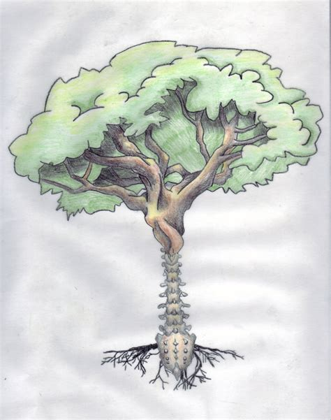 life spine tree by triften on deviantart