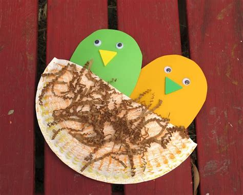 bird paper plate craft paper plate bird nest july august pre k ideas
