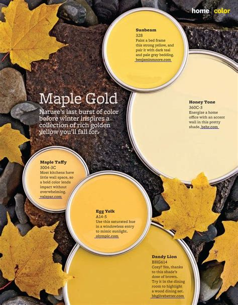 xo paint colors imagine design 187 5 maple gold paint colors from better