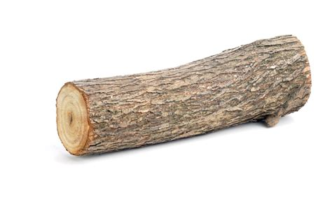 log woodworking intermediate word of the day log wordreference word of