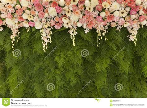 Mural Wallpaper For Walls beautiful flowers with green fern leaves wall background