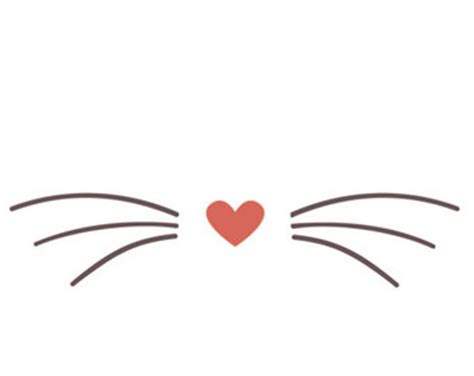 cat nose and whiskers whiskers etsy