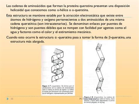 cadenas queratinicas estructura del cabello