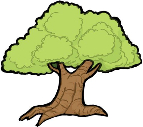 how to draw tree pictures how to draw trees with easy step by step drawing