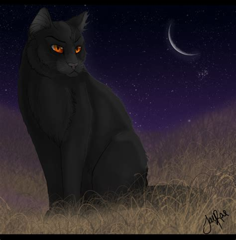 warrior cat warrior cats forever images breezepelt hd wallpaper and