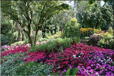 starting a flower garden starting a garden or taking an existing garden