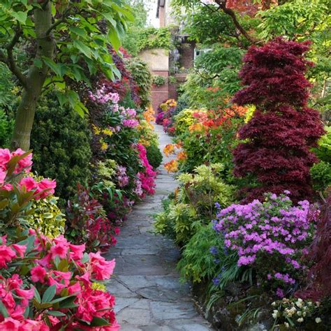 flowers for home garden 106 best images about beautiful home gardens flowers on