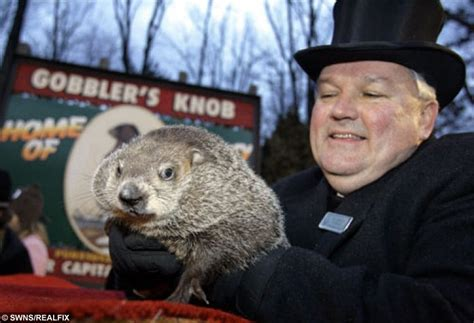 groundhog day where to it s groundhog day again 13 facts to celebrate 130 years
