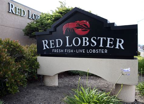 lobster olive garden revenues take a hit as darden s earnings tumble toronto