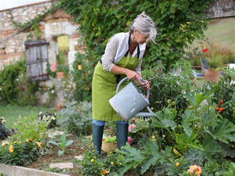 vegetable garden care starting a vegetable garden saga