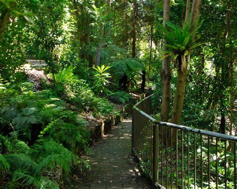australian national botanic gardens canberra gardensonline gardens of the world australian national