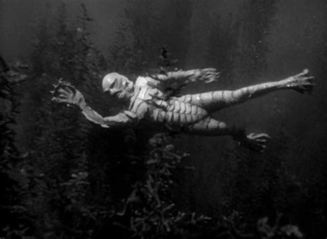 black lagoon hiatus 17 best images about creature from the black lagoon on
