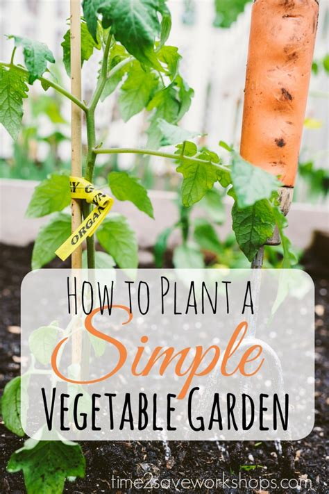 when to plant vegetable garden sweet simplicity how to plant a simple vegetable garden