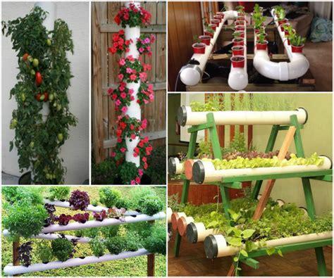 pvc garden ideas pvc pipe garden projects