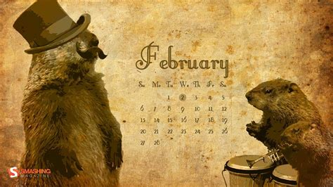 groundhog day where to groundhog day wallpapers wallpaper cave