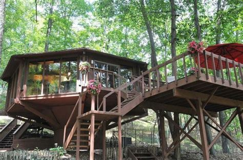 trees in the sale topsider tree house in the pennsylvania woods for sale