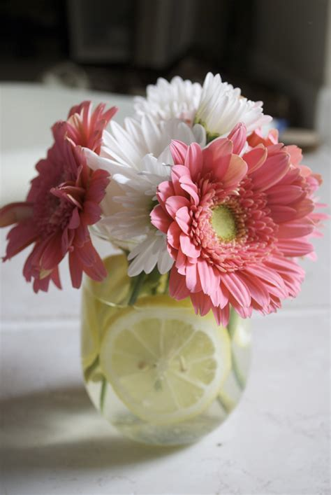 diy centerpieces diy wedding centerpieces gbvideo