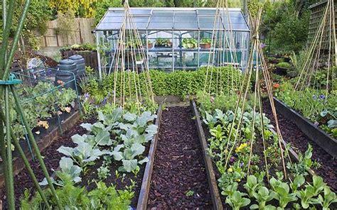 vegetable garden brisbane vegetable garden planner brisbane izvipi