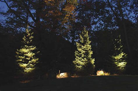 landscape lighting uplight trees understanding how to uplight trees in your landscape
